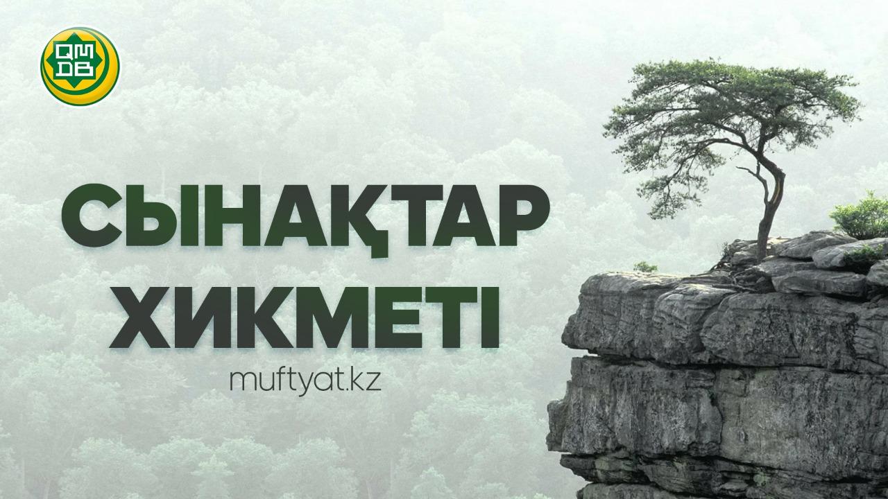 СЫНАҚТАР ХИКМЕТІ